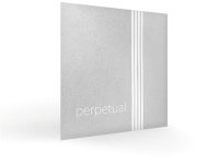 vln_perpetual_persp72 (1)